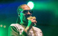 Snoop Dogg Ditangkap Polisi Swedia