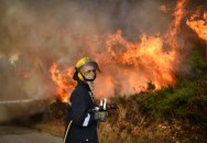 No Indonesian Casualties in Portugal Fires