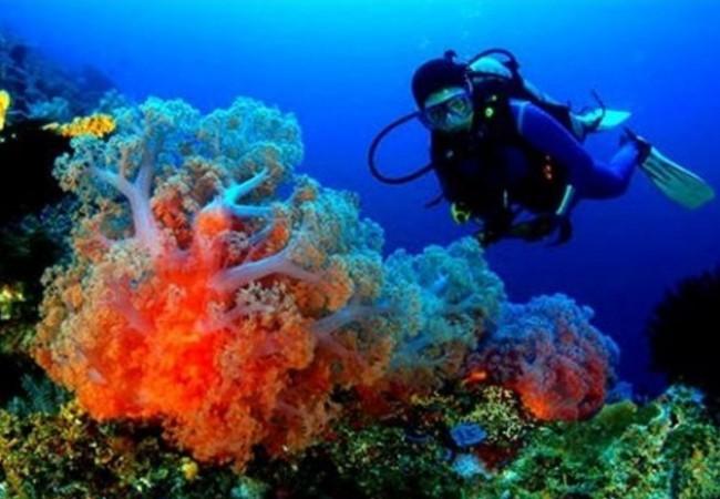 Ayo, Vote Indonesia Menjadi Top Dive Destination 2017
