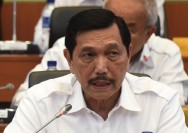 Indonesia Should Control Global Nickel Prices: Luhut