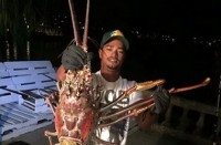Lobster Monster Ditangkap usai Badai Nicole