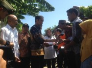 Jokowi Promises Financial Assistance for Pidie Jaya Residents