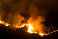 Wildfire Razes Homes in New Zealand