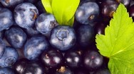4 Advantages of Blueberries