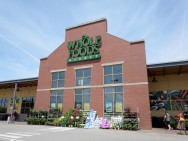 Akuisisi Whole Foods, Amazon Makin Serius di Pasar Ritel