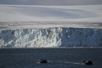 Huge Antarctic Ice Block Poised to Snap Off