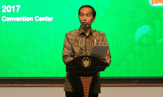 Jokowi Wants Improved Forest Management Policies
