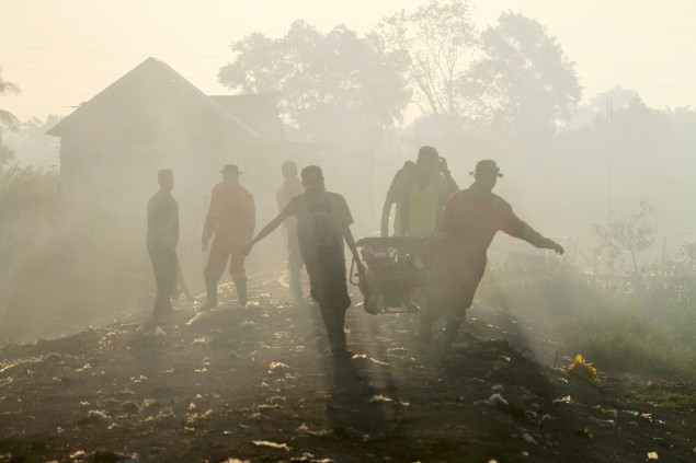 Forest Fires Burn 25 Hectares of Land in South Sumatra