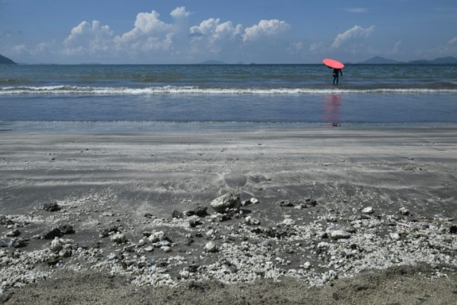 Hong Kong Cleans Up Greasy Beaches After Palm Oil Spill