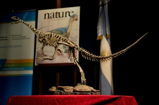 'Missing Link' Bolsters Bold Theory on Dino Evolution