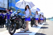 Yamaha All New R15 Sapa India Tahun Depan
