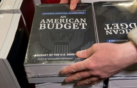 A Congressional staff member delivers copies of US President Donald Trump's Fiscal Year 2019 Government Budget at the House Budget Committee on Capitol Hill. (Photo:AFP/Saul Loeb)