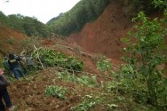 Landslide Kills at Least 5 People in Brebes