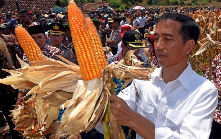 FAO Lauds Indonesia Achievements in Agriculture