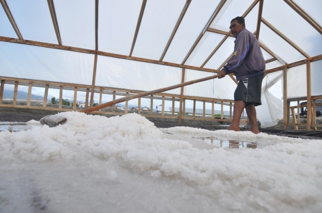 NTT Offers Investment in Salt to Australia, Timor Leste