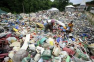 Researchers Accidentally Engineer Plastic-Eating Enzyme