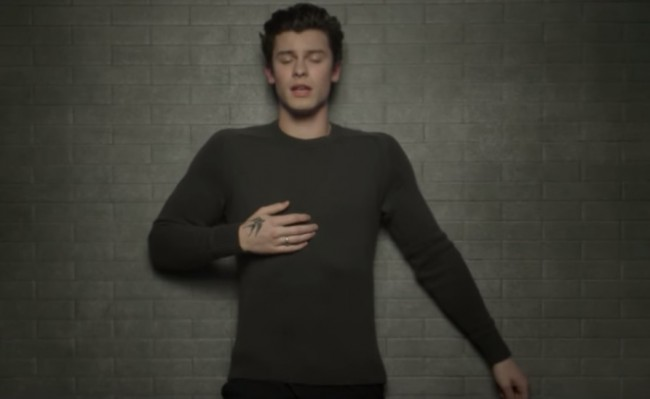 Shawn Mendes Rilis Video Musik In My Blood