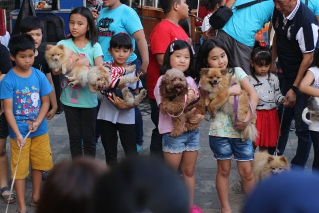 Kumpul di Mall, CDL juga Kampanye Dog are not Food