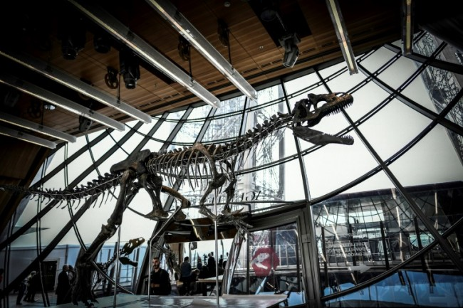 Rare Dinosaur Skeleton Sells for Two Million Euros