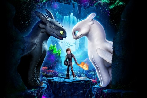How to Train Your Dragon 3 (dreamworks animation)
