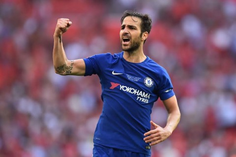 Cesc Fabregas (Foto:  AFP PHOTO / Glyn KIRK)