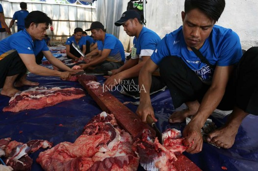 Media Group Potong 13 Sapi dan 18 Kambing