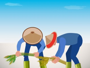 National Rice Stock is Sufficient up to July 2019: Bulog Head