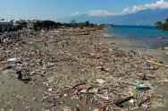 Survivor's story of Liquefaction Phenomenon in Central Sulawesi