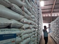Bulog Has Enough Rice Stocks: Jokowi