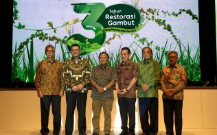 BRG Has Restored 680 Thousand Hectares of Peatlands: Chairman