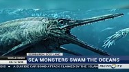 Scientists are Studying The Skeleton of Sea Monster