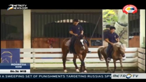 Horseback Riding, A Mind and Body Sport