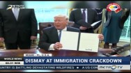 Dismay at Immigration Crackdown