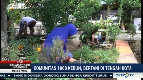 Komunitas 1.000 Kebun, Solusi Bertani di Tengah Kota (1)