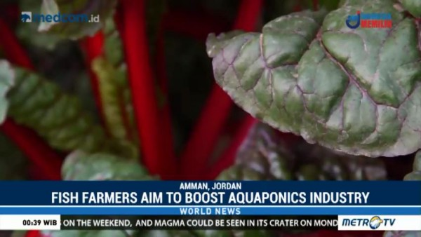 Fish Farmers Aim to Boost Aquaponic Industry
