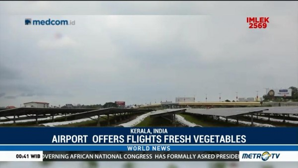 Airport Offers Flights Fresh Vegetables