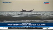 Pollution Hurting Seas dan People's Livelihood
