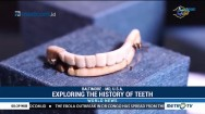 Exploring The History of Teeth at Baltimore's Dentistry Museum