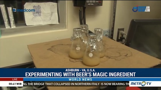 Experimenting With the Magic Ingredient in Beer