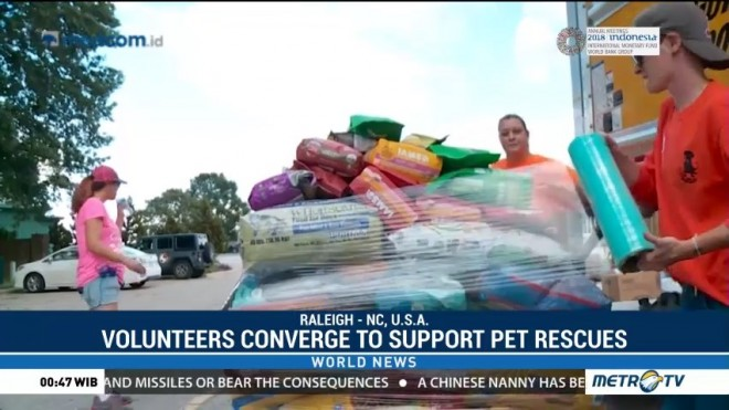 Volunteers Converge to Support Pet Rescue Efforts