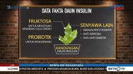 Jelly Break, Permen Herbal Anti Diabetes