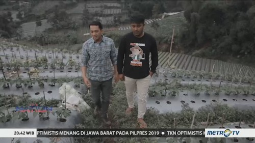 Petani <i>Go Digital</i> (2)