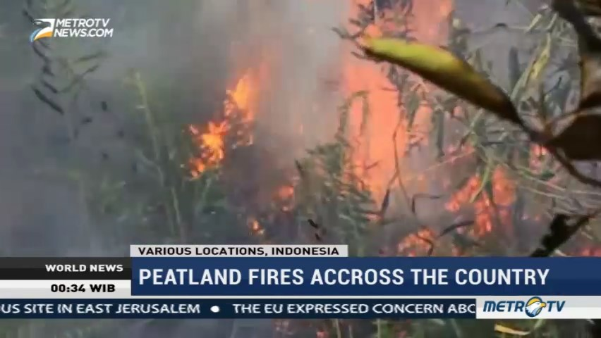 Peatland Fires Accross The Country